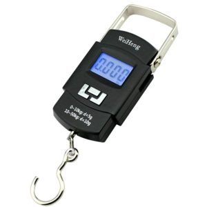50kg X 10g Mini Portable Electronic Scale Weight Luggage Scale Digital Travel Hanging Hook Scale Portable Weighing Scale With Temperature Display