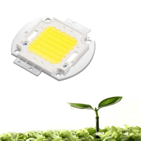 50W White High Power SMD LED Flood Light Lamp Bead, DC 12-14 Volt 50 Watt SMD LED Diode